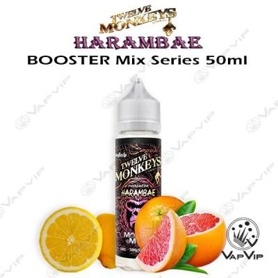 HARAMBAE E-liquid 50ml (BOOSTER) - Twelve Monkeys